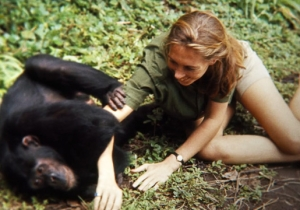 'Jane' Pays Tribute To Jane Goodall's Revolutionary Studies Of Chimp Life