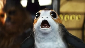 Your Love For Porgs May Vanish When You See What They Look Like As Babies