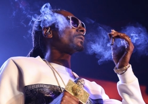 Matthew McConaughey And Snoop Dogg's Stoner Comedy Might Literally Smell Like Weed