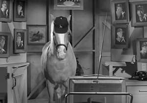 About The Time Mister Ed Hit A Home Run Off Of Sandy Koufax