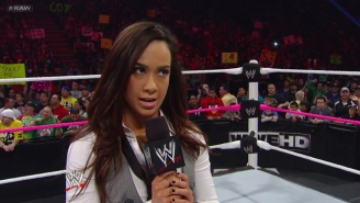 Former WWE Superstar AJ Lee Is Returning To TV In A Very Unexpected Way