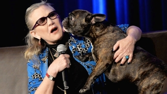 Carrie Fisher's Dog Gary Was An Inspiration For An Alien In 'The Last Jedi'