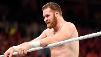 Sami Zayn's 2017 In WWE Was An Absolute Roller Coaster Ride