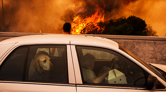 lapd warns about driving into the fires