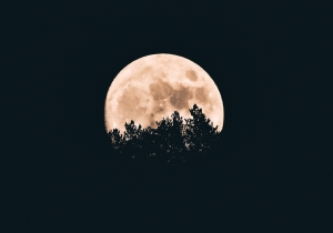 Why A Hike Under The Full Moon Should Be Your Next Adventure
