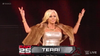 Terri Runnels Says Vince McMahon Nixed A Raw 25 Reunion With Goldust