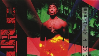 25 Years Later, Tupac's 'Strictly 4 My N.I.G.G.A.Z.' Album Is Still Too Relevant