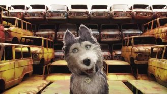 Bill Murray And The 'Isle Of Dogs' Cast Explain Their Dog Characters As Dogs