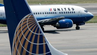 A Puppy Died After A United Airlines Flight Attendant Insisted It Be Stored In The Overhead Compartment