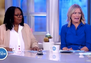 'The View' Worries That The Demise Of Toys R' Us Could Lead To Other Kinds Of 'Toy' Shops Closing