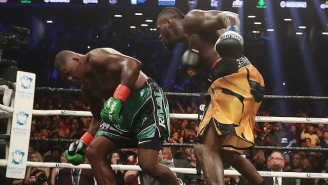 Deontay Wilder Scored Another Spectacular Knockout Finish To Retain Against Luis Ortiz