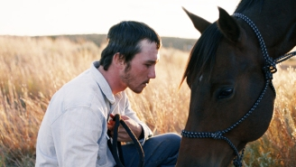 'The Rider' Finds Truth By Beautifully Blurring Fact And Fiction