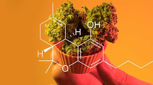 The Best Weed-Related Podcasts To Listen To Right Now – UPROXX