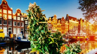 These International Weed-Friendly Cities Are Perfect For Fall Travel