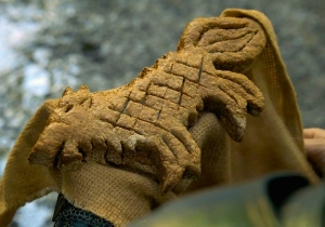 Watch Maisie Williams Make Hotpie's Direwolf Bread From 'Game Of Thrones' On 'Binging With Babish'