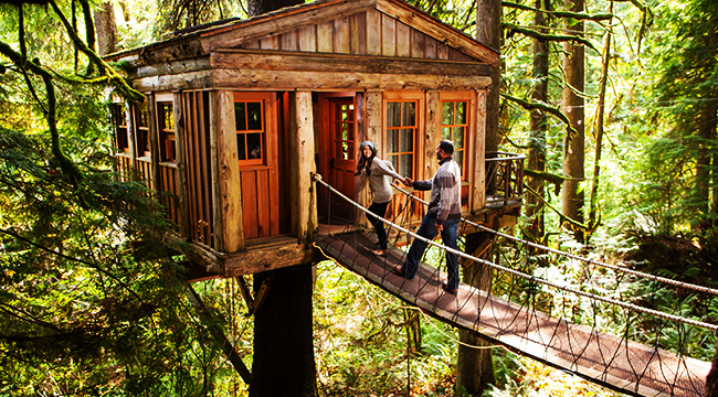 The Best Treehouse Hotels In The World For The Inner Child In Everyone