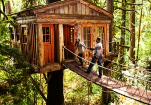 Give Your Inner Child An Epic Vacation In One Of These Treehouses