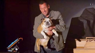 The Latest Trailer For Adam Sandler's Upcoming Netflix Special Features A Very Good Boy