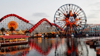 Please Stop Scattering The Ashes Of Your Loved Ones At Disneyland