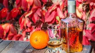 Bartenders Tell Us The Best Tequilas For Fall