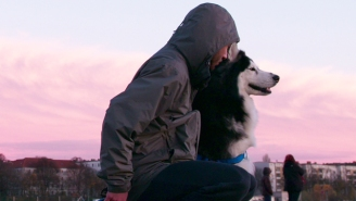 If You Enjoy Looking At Photos Of Dogs On Instagram, Then You'll Love Netflix's 'Dogs'