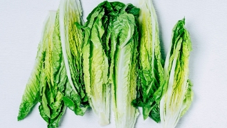 Romaine Recall — The Center For Disease Control Says Toss That Salad