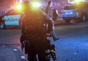A Survivor Of The Vegas Music Festival Massacre Was Killed At The Borderline Shooting