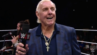 Ric Flair Has Been Hospitalized Following A 'Very Serious' Medical Emergency (Updated)