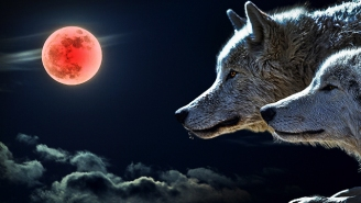 What Is The Super Blood Wolf Moon, And Where Can You See It This Month