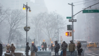 A Snow Squall Blew Through New York City, And The Videos Are Incredible