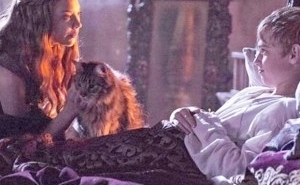 The 'Game Of Thrones' Showrunners Have Finally Revealed The Sad Fate Of Ser Pounce