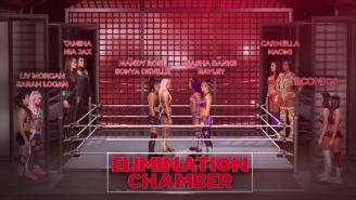 WWE Elimination Chamber 2019: Complete Card, Analysis, Predictions