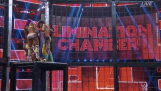 The First Modern WWE Women's Tag Team Champions Were Crowned Inside The Elimination Chamber