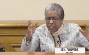 Watch State Lawmaker Stephanie Flowers Deliver A Fiery Condemnation Of Stand Your Ground Laws