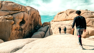 Avoid Coachella Fatigue By Escaping To One Of These Hikes For A Few Hours