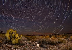 Big Bend National Park Is Big, Brawling, Iconic Texas At Its Very Best