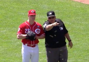 A Reds Game Was Delayed By A Swarm Of Bees On The Field