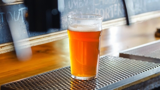 Brewers Tell Us Their Favorite IPAs That They Don't Make Themselves