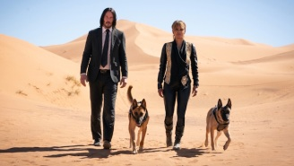 'John Wick 3' Director Chad Stahelski Tells Us The Secrets Behind The Movie's Incredible Stunt Dogs