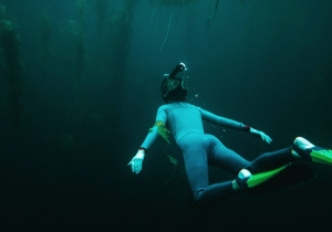 Sinkhole Diving In Florida's Panhandle Is A Secluded Underwater Escape