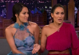 Nikki Bella Explained Why The Bella Twins Won't Come Out Of Retirement