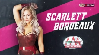 Scarlett Bordeaux Spoke Out About Being Grabbed By A Fan At AAA