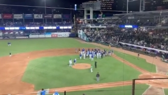 The Benches Cleared In A Minor League Baseball Game After A No-Hitter Was Broken Up By A Bunt