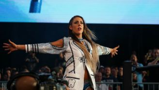 Britt Baker Sustained A 'Pretty Bad' Concussion At AEW Fight For The Fallen