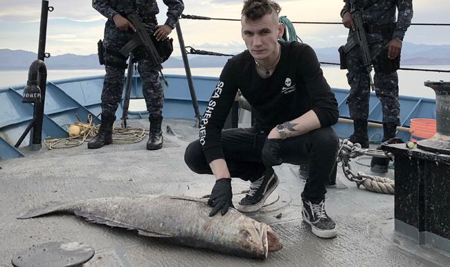 Sea Shepherd's Jack Hutton with dead totoaba