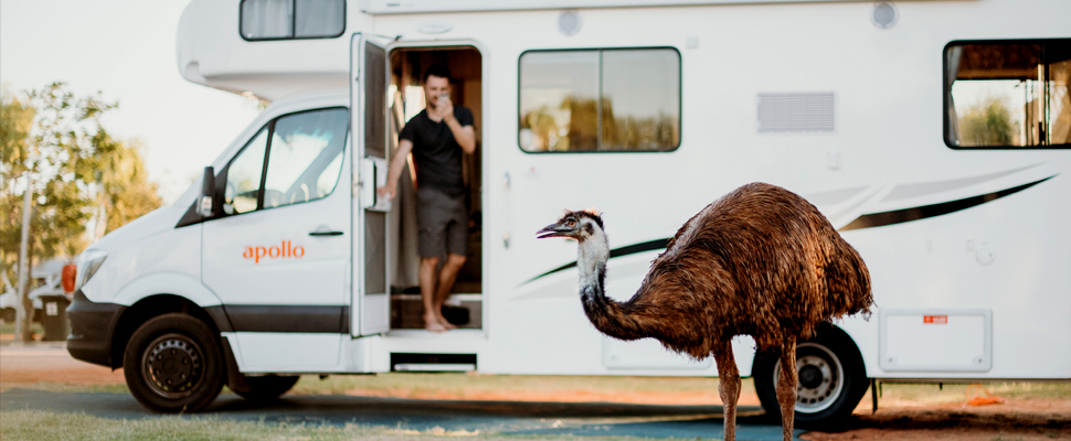 A Western Australia Road Trip Is A Dream For Wildlife Lovers