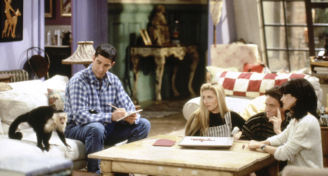 Marcel, Ross' Monkey From 'Friends,' Might Be Coming Back To Television