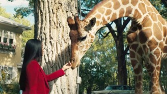 Rosario Dawson Solves Murders And Pets Giraffes In USA Network's Offbeat 'Briarpatch' Trailer