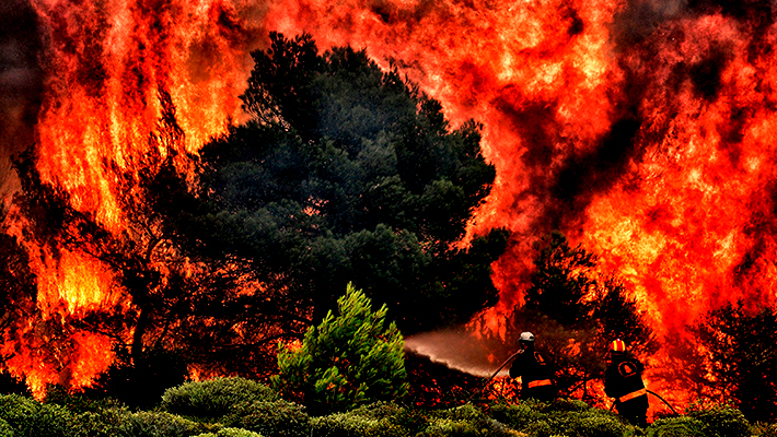 The Science Behind Why Wildfires Happen And How You Can Help Prevent Them