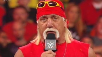 Hulk Hogan Got Into A Bar Altercation Over Shirley Temples This Weekend